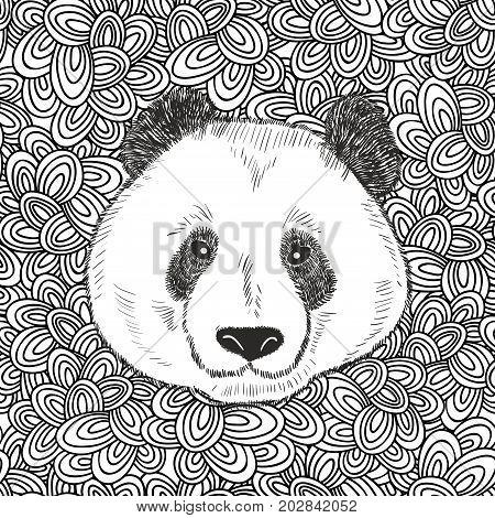 Cute bear panda portrait. Vector illustration with endless doodle background.