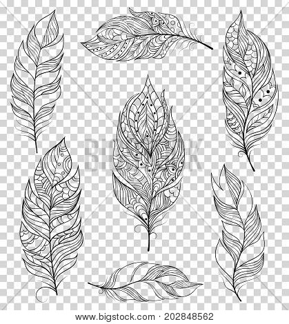 Set of black feathers on transparent background. Temporary tattoo for kids.Vector illustration.