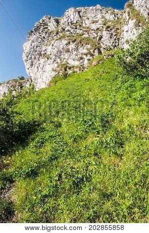 mountain meadow limestone rocks and clear sky on Klak hill in Mala Fatra mountains in Slovakia