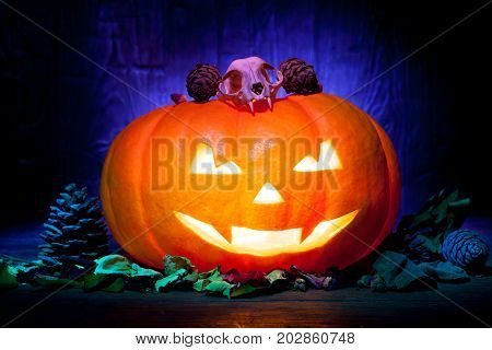Scary Halloween Pumpkin On A Blue Wooden Background