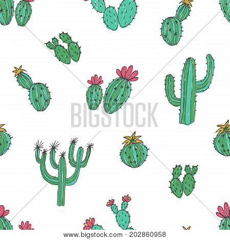 Natural seamless pattern with hand drawn green cactus on white background. Blooming Mexican desert plants. Botanical vector illustration for backdrop, wrapping paper, textile print, wallpaper