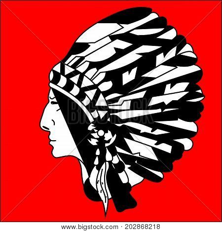 graphic picture in profile North American Indian