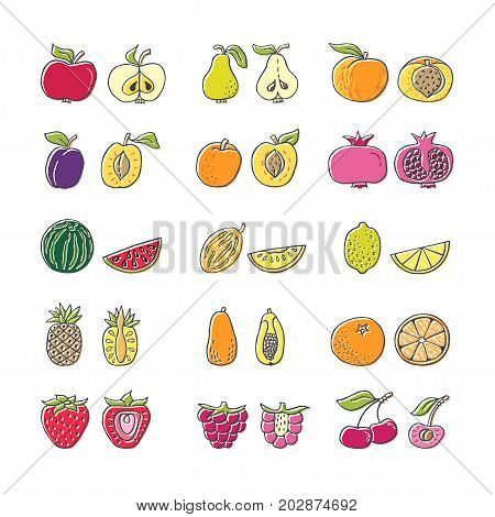 Fruit hand drawn icon set in flat style. Perfect vector design elements for decorations organic food pattern wrapping paper bio products wallpaper