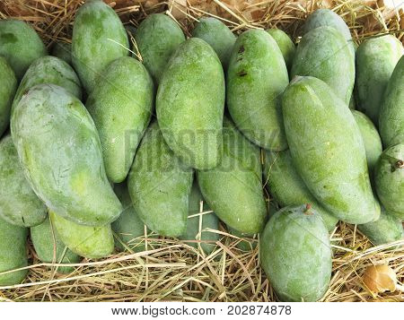 Fresh mango for sale. A pile of mango selling in a market, mango background