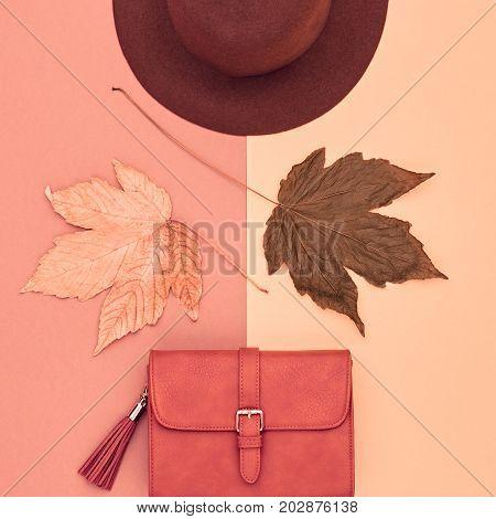 Fall Fashion Glamour Lady Look.Trendy Handbag Clutch. Fashion Stylish Glamour Hat. Fall Leaves. Autumn Minimal. Vintage