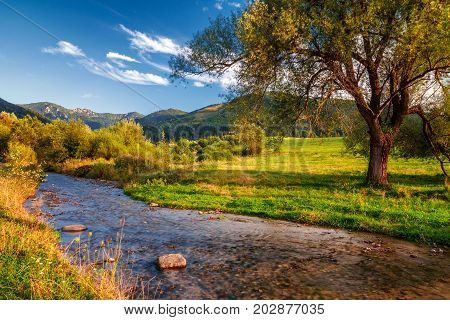 Sunny landscape with stream running from mountains and blue sky with clouds in the background national park Mala Fatra Slovakia.