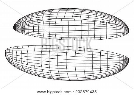 Wireframe Mesh Hemisphere Shell. Connection Structure. Digital Data Visualization Concept. Vector Illustration.