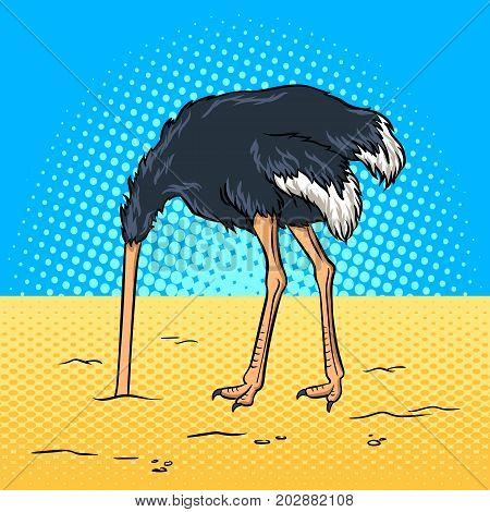 Ostrich hide head in sand pop art retro vector illustration. Avoiding problems metaphor. Comic book style imitation.