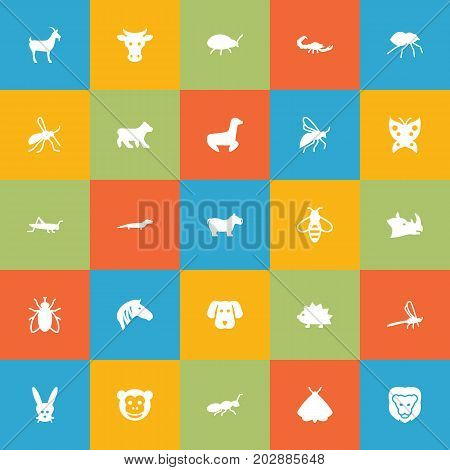Collection Of Livestock, Porcupine, Ape And Other Elements.  Set Of 25 Animal Icons Set.