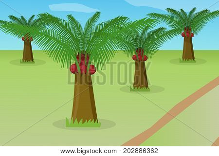 African oil palm field in vector design