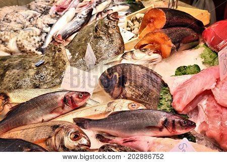 Fish Prices In Spain