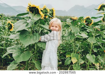 Adorable little 3-4 year old kid girl playing with giant sunflowers in a field. Happy childhood in a countryside. Autumn fashion for children