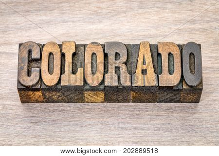Colorado -  word in vintage rustic letterpress wood type - French Clarendon font popular in western movies and memorabilia