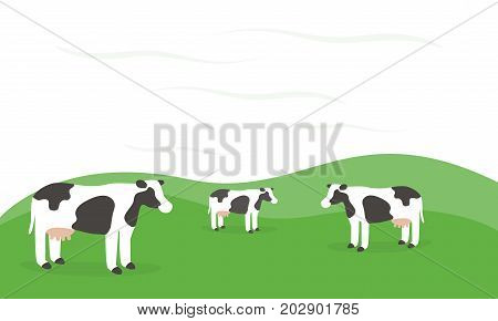 Three Cow standing outside farm in green grassland field beautiful nature background.