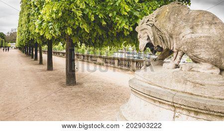 Tatue Called Le Lion Au Serpent Sculpted By Antoine Louis Barrye