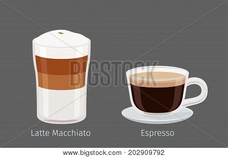 Coffee cups with Latte Macchiato and Espresso on grey background with name signs under each. Kinds of Italian coffee. Minimalist isolated vector illustration of hot drinks for coffee shops and cafes.