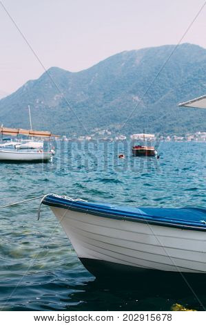 Shot of fishing boats docked in city or town little port in kotor bay in croatia warm and crystal clear blue waters