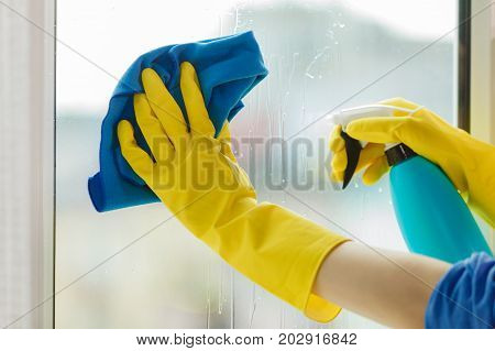 Female hand in yellow gloves cleaning window with blue rag and spray detergent. Spring cleanup housework concept