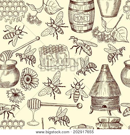 Vector seamless pattern with honey, bees and honeycomb, Illustration of background with honey and bee insect