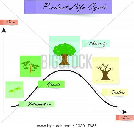 Product Life Cycle Diagram On White Background For Business & Education Designed As Colorful Sticky Notes With Tree Growing Four Stages Introduction Growth Maturity Decline.