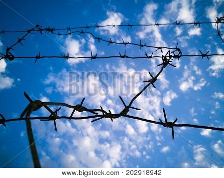 Barbed wire against the sky with clouds .
