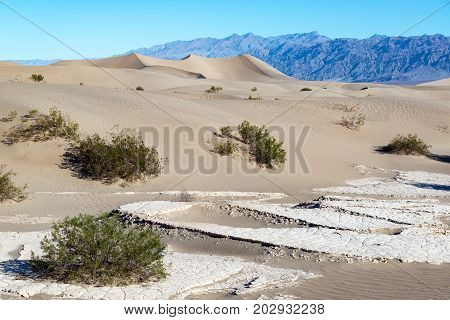 Landscape view of the Mesquite Flat Sand Dunes in Death Valley National Park in California