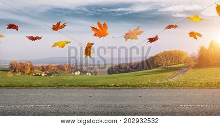 Rural autumn road with fallen leaves flying