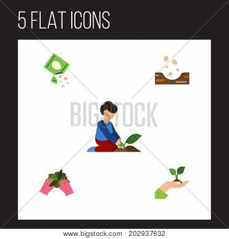 Flat Icon Seed Set Of Packet, Florist, Seed And Other Vector Objects