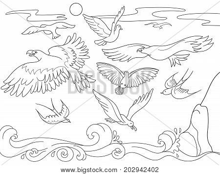coloring book cartoon for children. Above the sea birds of different kinds fly. Black and white lines raster illustration
