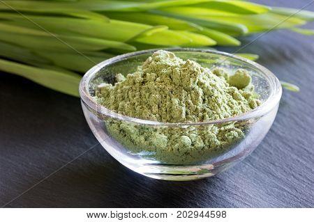 Green Barley Grass Powder, With Fresh Barley Grass