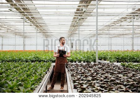 Young male gardener in apron holding folder and working with green plants in greenhouse