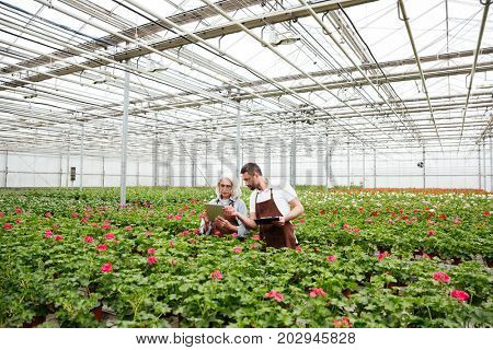 Couple of serious mature workers in aprons standing in garden near flowers and talking