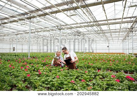 Couple of cheerful mature workers in aprons standing in garden near flowers and talking