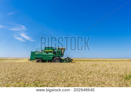 Combine harvester agriculture machine harvesting yellow ripe wheat field, copy space