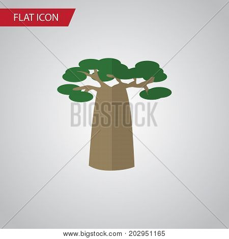 Baobab Vector Element Can Be Used For Tree, Park, Baobab Design Concept.  Isolated Decoration Tree Flat Icon.