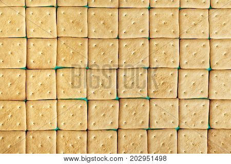lots of crackers appetizing background. square crackers are laid out in rows