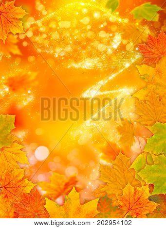 A Autumn background, Golden autumn with bokeh