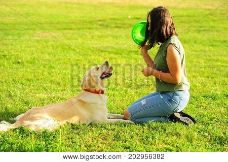 Pretty brunette woman playing with a dog white golden retriever on the grass in park. Training the dog woman with her dog on green meadow