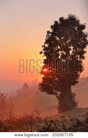 Foggy morning. Misty rural hills. Foggy autumn sunrise in mountains.