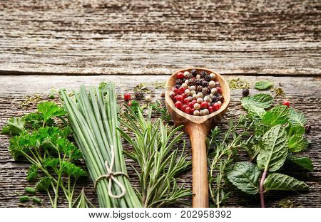 Fresh herbs and peppers spices on a wooden board