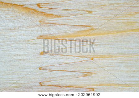 Macro shot of the joint of glued sawn timber. A fragment of a wooden panel glued hardwood. Glued sawn timber texture