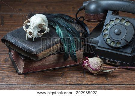 Vintage Witchcraft Still Life