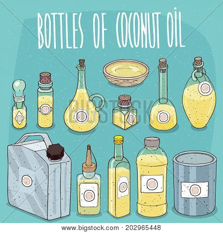 Set of different transparent containers of different materials with oil from Coconuts known as Coconut oil. On all bottles stickers with image of plant