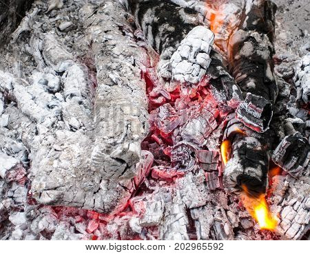 Smoldering Coals In The Grill. Burning Fire After A Shish Kebab.