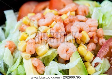 Fresh Shrimp salad - Delicious fresh salad with tomatoes