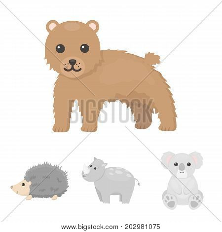 Rhino, koala, panther, hedgehog.Animal set collection icons in cartoon style vector symbol stock illustration .