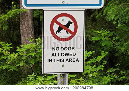 A No Dogs Allowed In This Area Sign