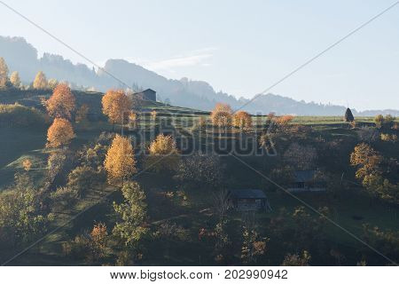 Autumn landscape in a mountain village. A garden with bright trees on a hill