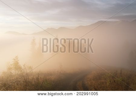 Autumn landscape with a beautiful dawn. Morning mist in the mountains