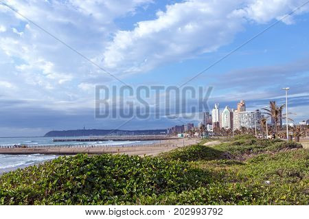 Coastal Landscape Dune Vegetation Beach Sea Against  City Skyline